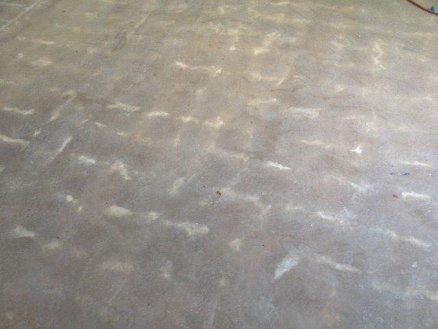 Plastic settlement slab cracks