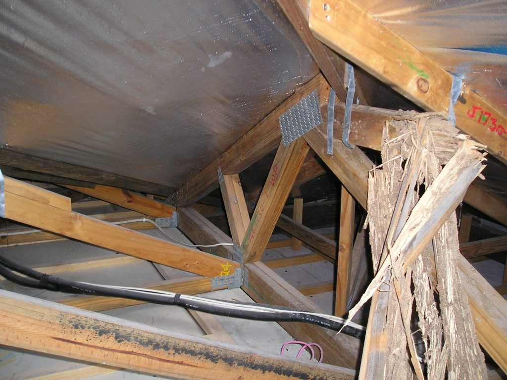 Termite damaged roof truss Cornell Engineers Forensic